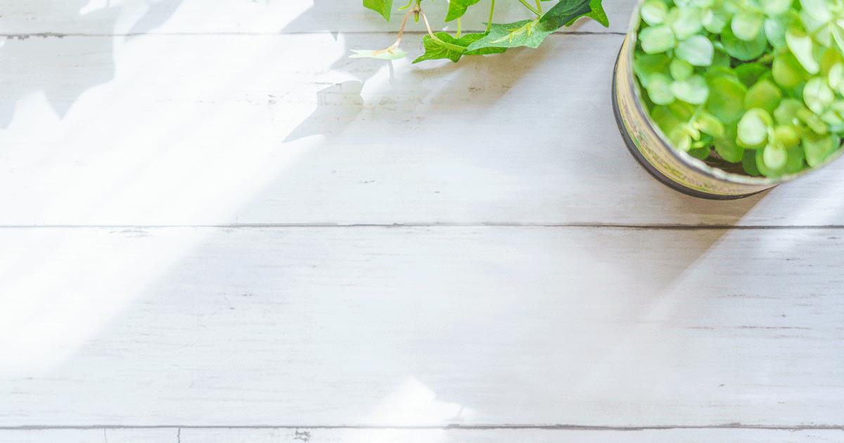 ビタミンCで「日焼け」前後の栄養バランスを整える。美白は一日にして成らず。